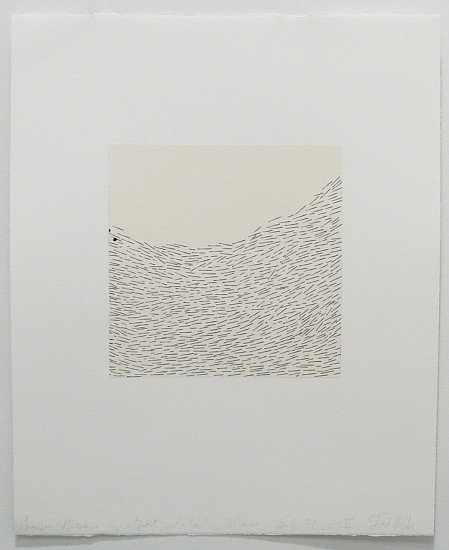 Tad Mike, Bonyun Preserve, Westport Island, Maine July 30, 2012 II 2012, Walnut ink with chine-colle on BFK rives paper