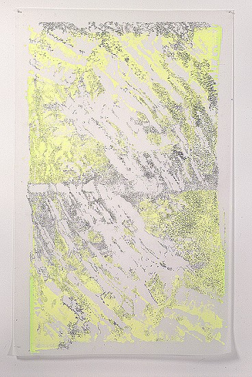 Fran Siegel, Strata 07 2004, Graphite and silkscreen on translucent duralar