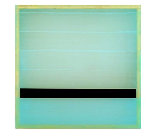 Heather Hutchinson, Freeze, Freeze Thou Bitter Sky 2005, Beeswax, pigment, Plexiglass, enamel and birch