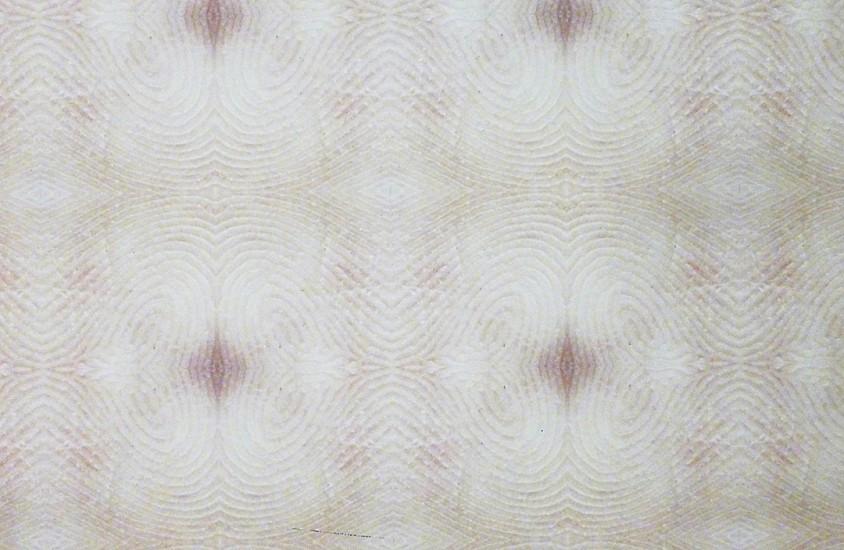 Brice Brown, Wallpaper 2012, Archival pigment print